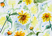 Daisy Drawings - Daisy Design by Barbara Beck-Azar