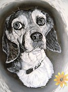 Kevin F Heuman Framed Prints - Daisy Dog Framed Print by Kevin F Heuman