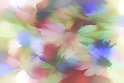 Soft Color Print Prints - Daisy Floral Abstract Print by Tom York