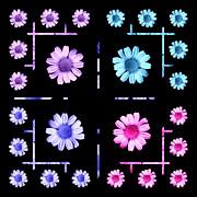 John Tidball  - Daisy Floral Pattern
