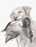 Animals Drawings - Daisy by Kathleen Kelly Thompson