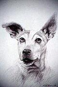 Emotional Drawings - Daisy by Rick Hansen