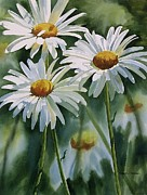 Daisy Trio Print by Sharon Freeman