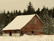 Donna Cavanaugh - Dale Lane Barn