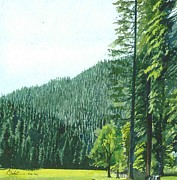 Plantations Drawings - Dalhousie by Saket Mehendale