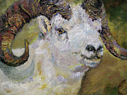 Goats Framed Prints - Dall Sheep Ram Framed Print by Ginette Fine Art LLC Ginette Callaway