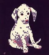 Dalmatian Puppy Print by George Adamson