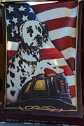 Fire Dog Prints - Dalmatian The Firefighters Mascot Print by Paul Ward