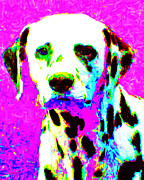 Warm Digital Art - Dalmation Dog 20130125v1 by Wingsdomain Art and Photography