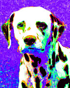 Dogs Digital Art Metal Prints - Dalmation Dog 20130125v4 Metal Print by Wingsdomain Art and Photography