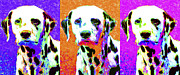 Puppies Digital Art Metal Prints - Dalmation Dog Three 20130125 Metal Print by Wingsdomain Art and Photography