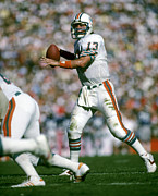 Marino Prints - Dan Marino NFL Hall of Fame Print by Sanely Great