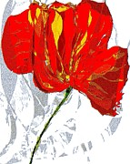 Navo Art - Dance Of Poppy