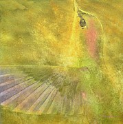 Hummingbird Paintings - Dance by Robert Hooper