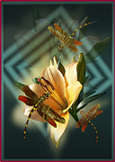 Dragonfly Art Framed Prints - Dancing Dragonflies  Framed Print by Gina Femrite