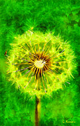 Aster Paintings - Dandelion by George Rossidis