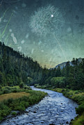 Multiple Exposures Posters - Dandelion Moon Poster by Belinda Greb