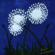 Gail Matthews - Dandelions at night