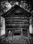 Log Cabins Prints - Daniel Boone Inn Print by Karen Wiles
