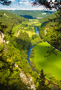 Sommer Prints - Danube valley beautiful green trees and meadows Print by Matthias Hauser
