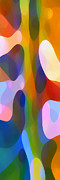 Dappled Light Panoramic Vertical 2 Print by Amy Vangsgard