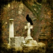 Crow Art Prints - Dark Autumn Print by Gothicolors And Crows