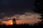 Tom Mansfield - Dark Clouds