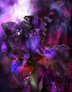 Bearded Iris Posters - Dark Goddess Poster by Carol Cavalaris
