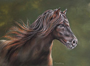 Horse Pastels Paintings - Dark Horse in the Sunshine by Christina Frenken