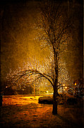 Snowy Night Metal Prints - Dark Icy Night Metal Print by Sofia Walker