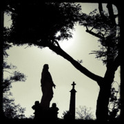 Gothicolors Donna Snyder - Dark Mysterious Light