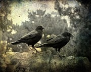 Ravens Digital Art Posters - Dark Nature Poster by Gothicolors And Crows