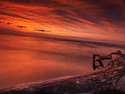 Dark Skies Posters - Dark red dramatic sunset scenery over lake Huron Poster by Oleksiy Maksymenko