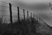 Barbed Wire Fences Photos - Dark Row by Jerry Stolarski