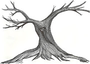 Cypress Tree Drawings - Darken Heart by Minnie Lippiatt