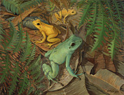 ACE Coinage painting by Michael Rothman - Dart Arrow Frogs