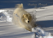 Snow Dog Posters - Dashing Through The Snow Poster by Lois Bryan