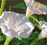 Datura Paintings - Datura the Lowly Jimson Weed by Dave Barnett