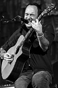Farm Aid 2010 Prints - Dave Matthews on Guitar 1 Print by The  Vault - Jennifer Rondinelli Reilly