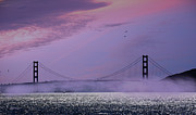 Grey Clouds Posters - Dawn at the Golden Gate Poster by Cheryl Young
