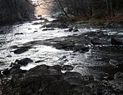 Blackstone River Prints - Dawn downstream Print by Ted Rickson