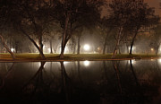 Chico Originals - Dawn Mist Rising at Sycamore Pool  by Abram House