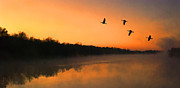 Canadian Geese Digital Art Posters - Dawn Patrol Poster by Steven Richardson