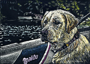 Dog In Lake Posters - Dawson at the Lake Poster by Robert Goudreau