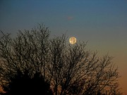 Jon Burch Photography - Day Two - Dawn and Moonset