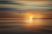 Daybreak Print by Gary Smith