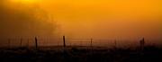 Pandyce McCluer - Daybreak