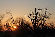 Lorri Crossno Metal Prints - Daylight Savings Sunrise Metal Print by Lorri Crossno