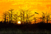 Sunset Scenes. Prints - Days End Print by Debra and Dave Vanderlaan
