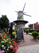 Nederland Prints - De Brak WINDMILL Print by PainterArtist FIN